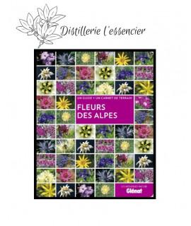 Livre : Fleurs des Alpes (Glénat)